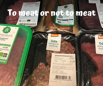 To meat or not to meat.png