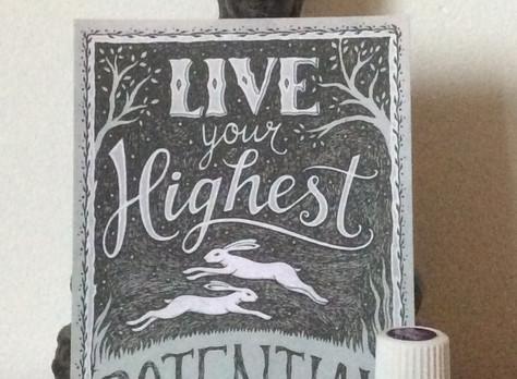 Blog: Highest Potential – leef je hoogste potentieel