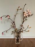 Magnolia's.JPG