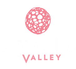 ovolo-the-valley-logo.png