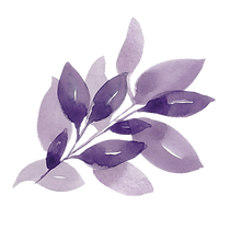 purple3.PNG
