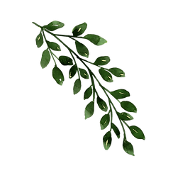 green8.PNG