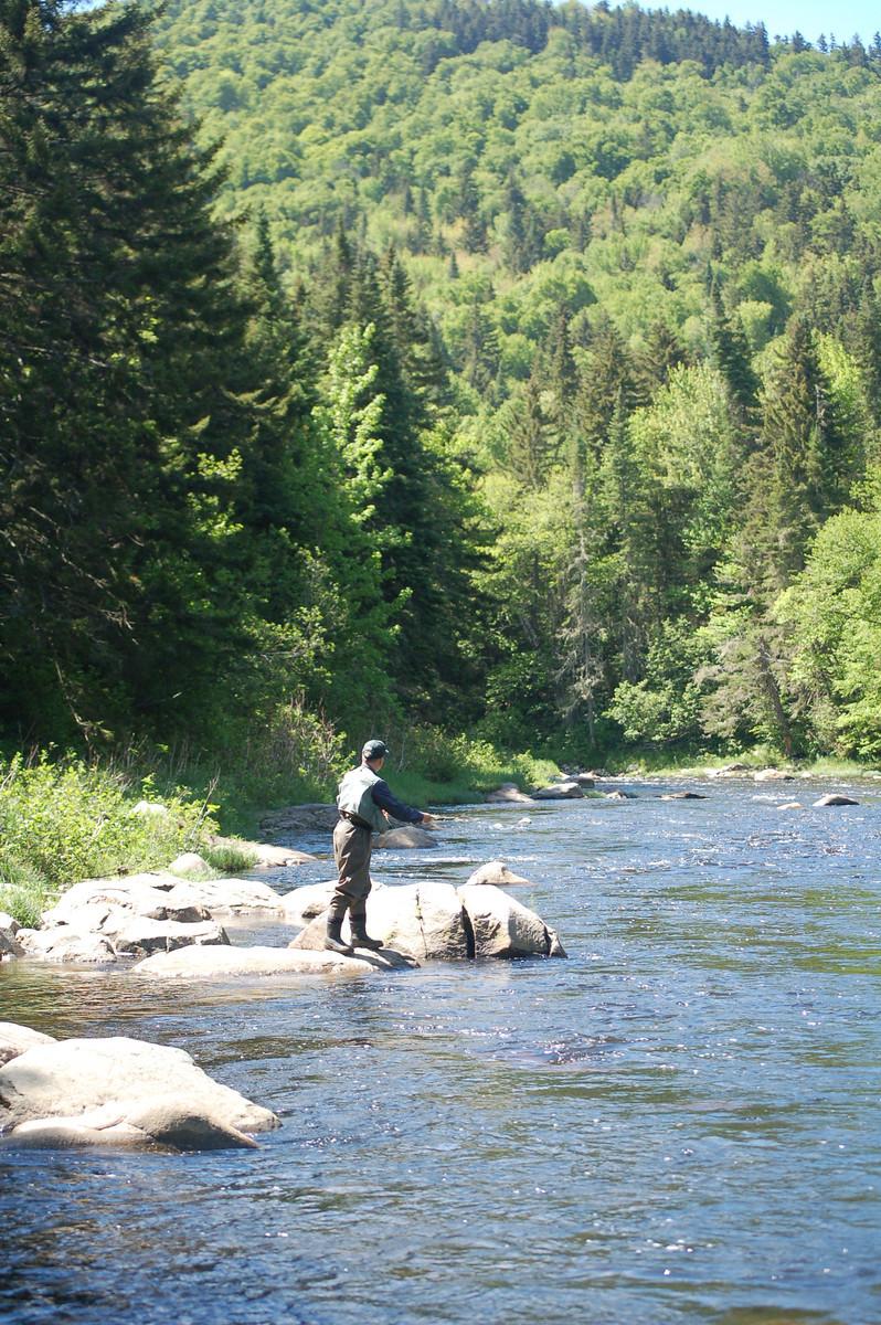 Perfect Fishing Day