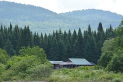 Cabin in the Grant