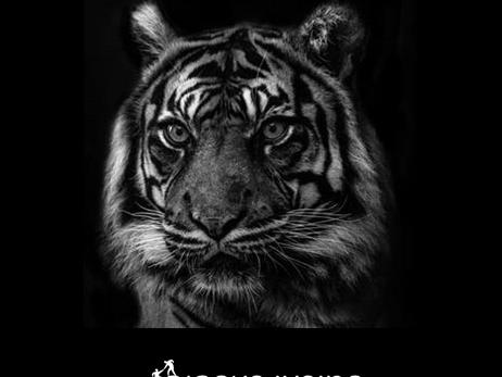 הנמרים שבתוכנו