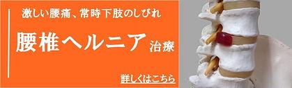札幌市大通腰椎ヘルニアの鍼