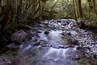 Milford Stream