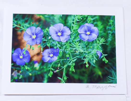 Blue Flowers Greeting Card (RSB 512)