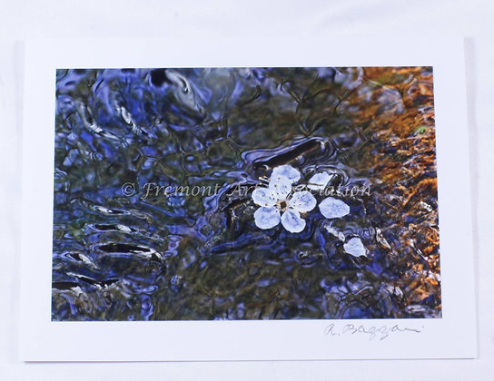 Blossom Stream Greeting Card (RSB 515)