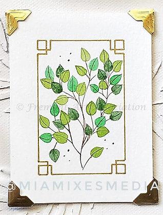 Eucalyptus (MTB 011)