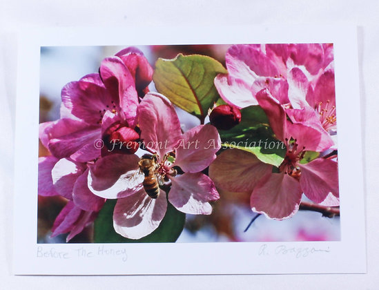 Apple Blossoms Card (RSB 517)