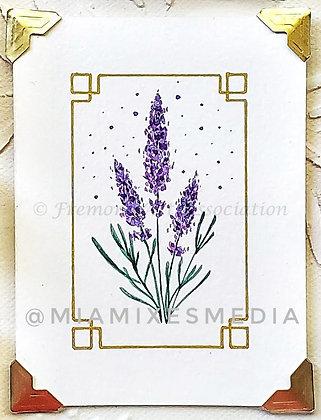 Lavender (MTB 016)