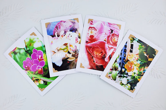 """""""Orchids"""" Greeting Cards (MTB 501)"""