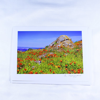 California Poppies Greeting Card (RSB 509)