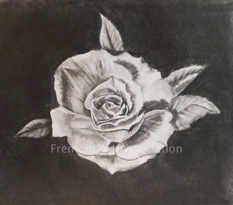 """Rose in Bloom"""