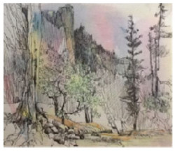 Jan Schafir: Pen and Ink Watercolor Wash.
