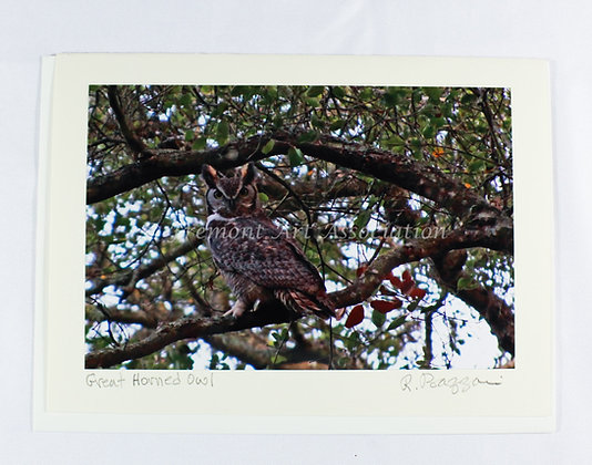 Great Horned Owl Card (RSB 501)