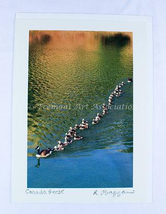 Canada Geese Card (RSB 503)