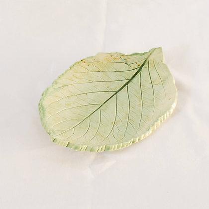 Leaf (MMB 016)