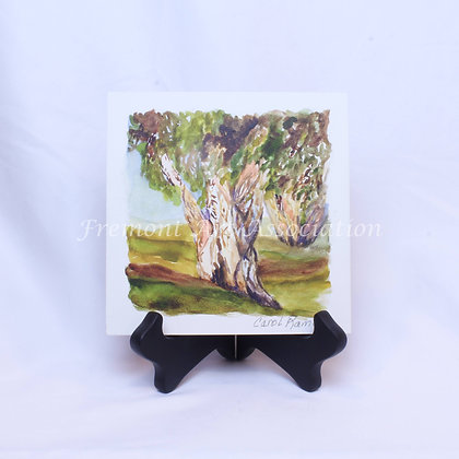 Paper Trees  (CKR 003)