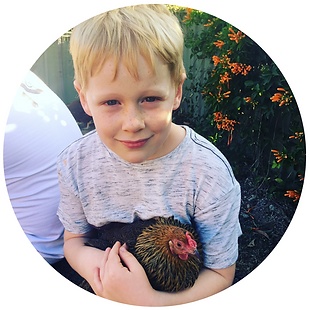 Max chook circle crop.png