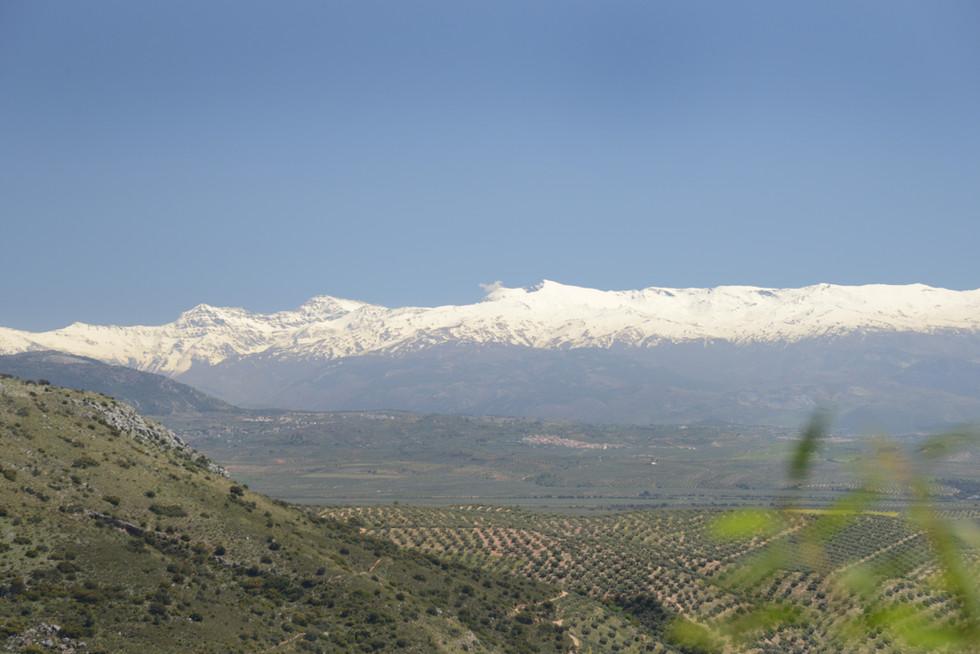 Ausblick über die weite Landschaft bis zur Sierra Nevada.