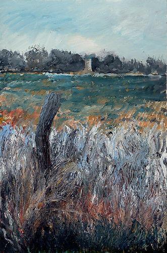 Blue Grass Field