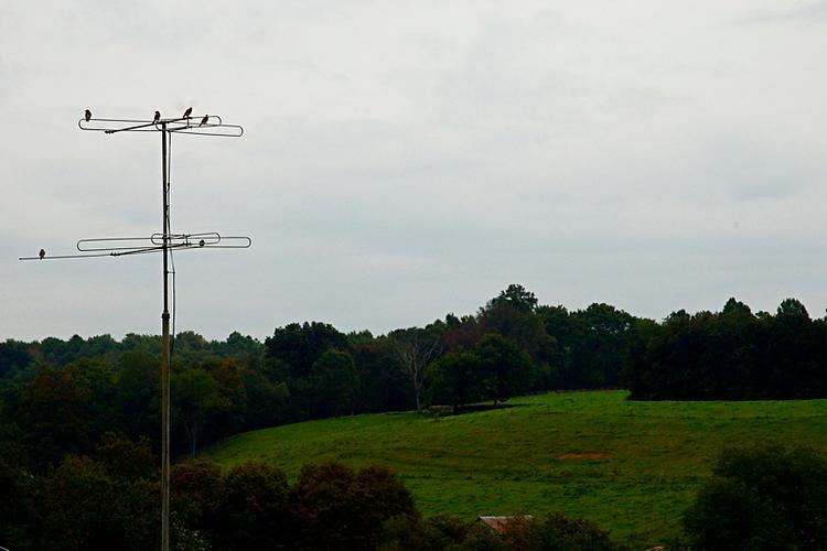 Ohio-10.jpg