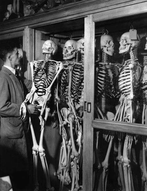 Contentious Statues: Skeletons in Cupboards