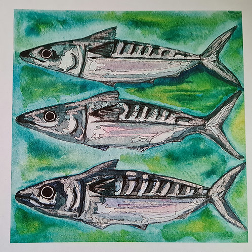 Three Little Fishes 5pk of Cards