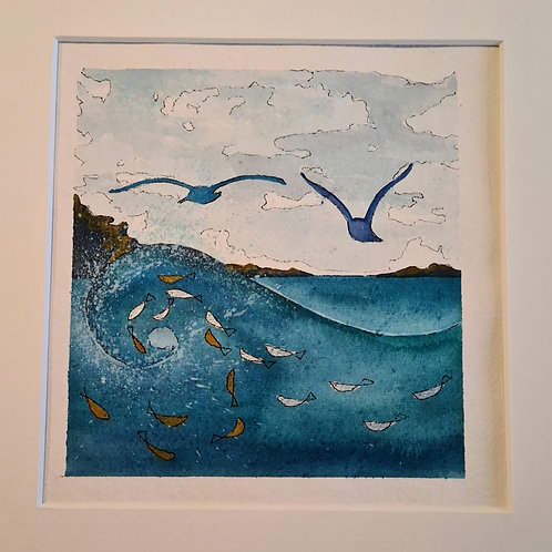 Blue Gulls