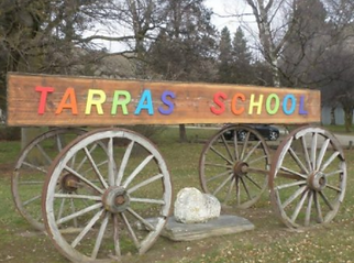 tarra primary.PNG