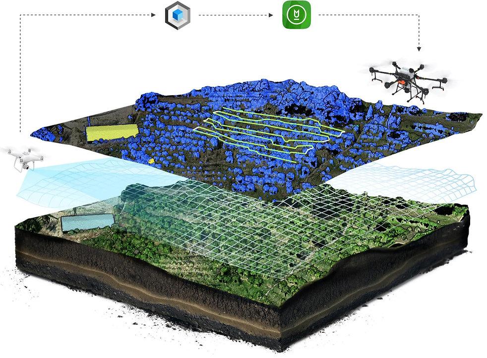 Präzisionslandwirtschaft mit Drohnen - P