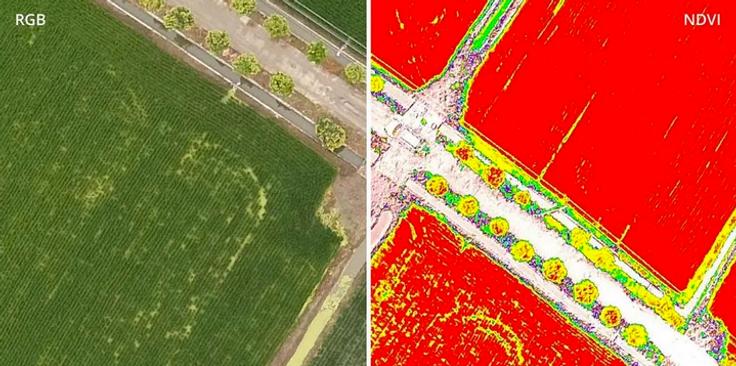 Multispektrale Aufnahmne per Drohne in d