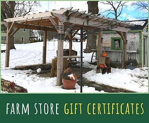 farm store gift cert.png