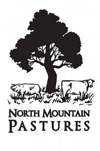 nmtp logo.jpg