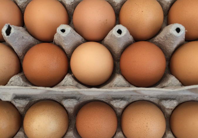 close up eggs.JPG