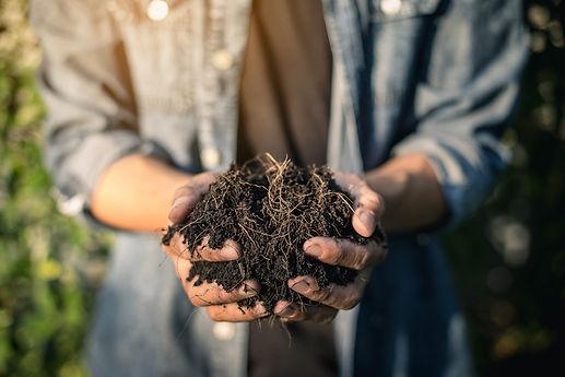 handful of soil.jpg