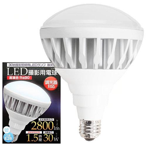 撮影照明用LEDランプ 散光型 白色 300Wタイプ