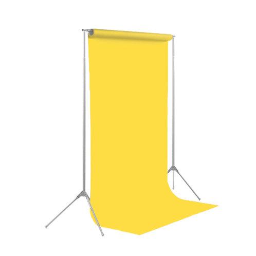 背景紙レギュラーサイズ幅2m70cm長さ11m(107)ダフォデイル