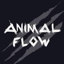 animal flow.jpeg