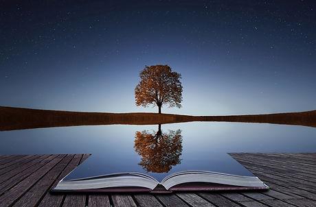 reflect tree book.jpeg