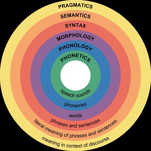 Phonology, Morphology, Syntax...