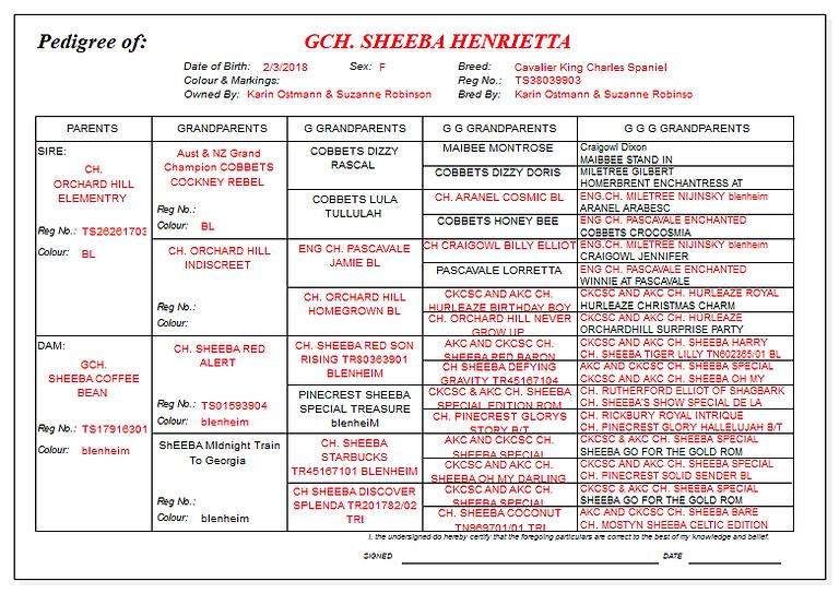 HENRIETTA pedigree.png