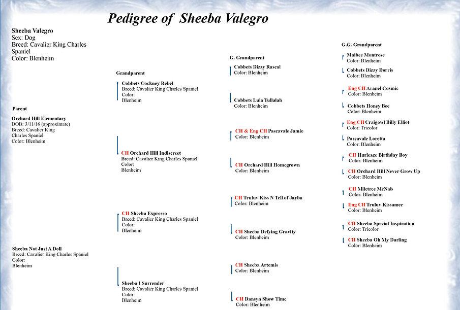 Valegro's pedigree.jpg