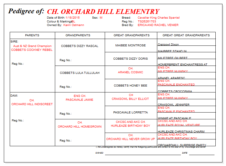 CH Orchard Hill Elementary's Pedigree