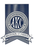 akc breeder of merit ribbon.png