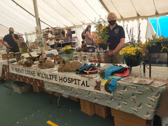 Stansted Garden Show Stall