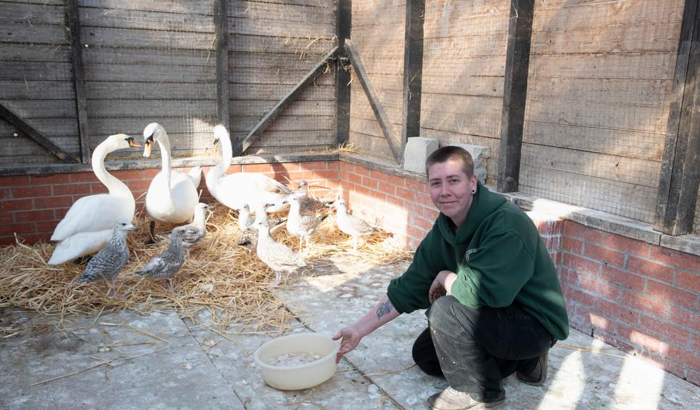 Sam in bird aviary.jpg