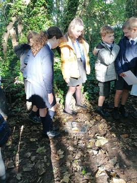 Bosmere Primary School Visit